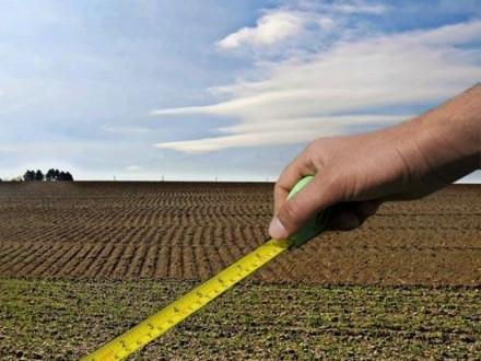 Консультує юрист: документи власника земельного паю і права оренди