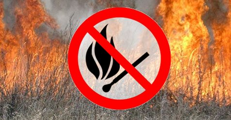 Не пали суху траву!