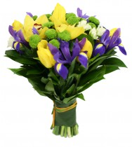 tulips sun-2804_thm