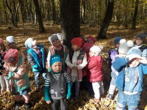 садочок осінь 18 (12)