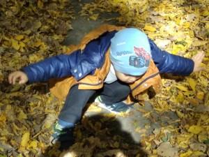 садочок осінь 18 (36)