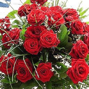 Вітаємо з Днем народження Віктора Шклярука!