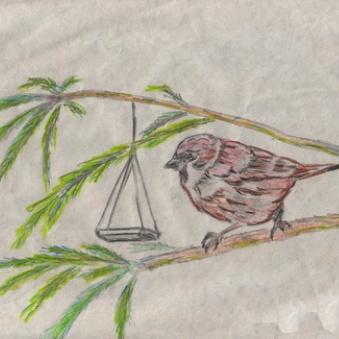 Допомога зимуючим птахам другокласниками Бодаківської ЗОШ Вишнівецької ОТГ