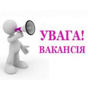 ВАКАНСІЯ! Нам потрібен провідний спеціаліст відділу освіти, культури, молоді та спорту Вишнівецької селищної ради!