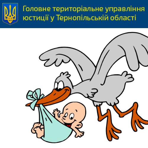 Консультує Міністр юстиції П. Петренко. Реєстрацію новонародженого спрощено