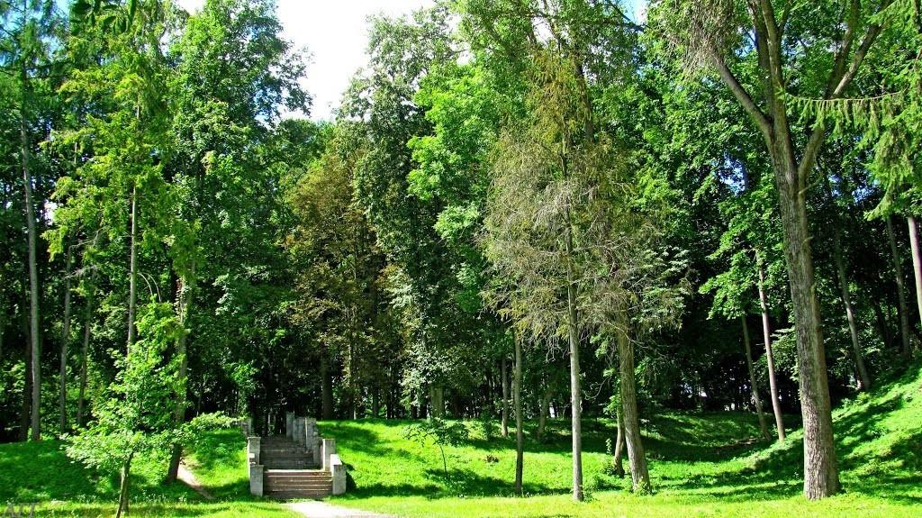 Пейзажний парк (16)