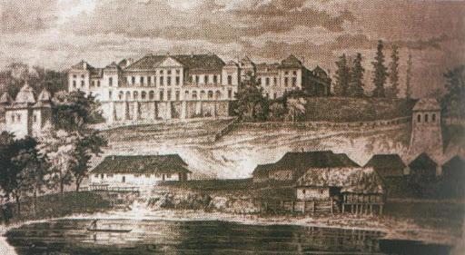 Вишнівецький палац, ретро фото 23
