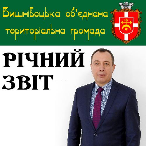Звіт селищного голови Володимира Кравця