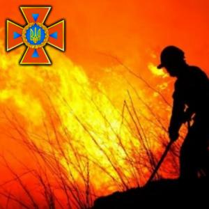 лог стерня пожар пожежа