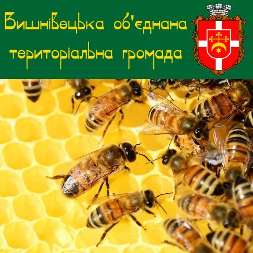 До уваги пасічників! Дотації на бджолосім'ї до 30.09.2020