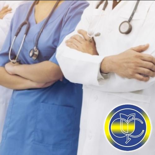 Фонд направив 295 тис. грн на щомісячні виплати за січень для 51 медика і їх родин